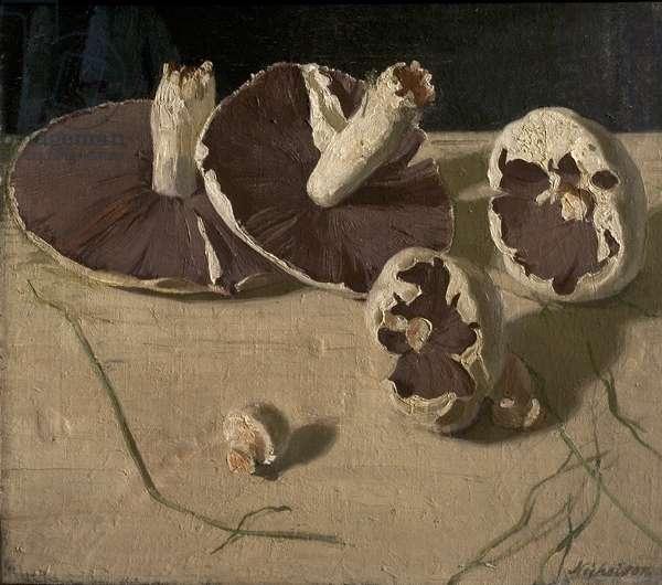 Mushrooms, 1927 (oil on canvas)