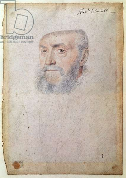 Portrait of Anne de Montmorency (1493-1567) Constable and Marshal of France, c.1560 (pencil and sanguine on paper)