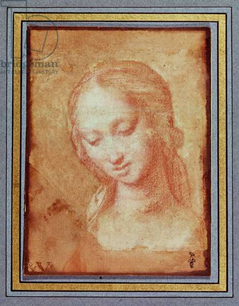Study of the Head of the Virgin (red chalk on paper)
