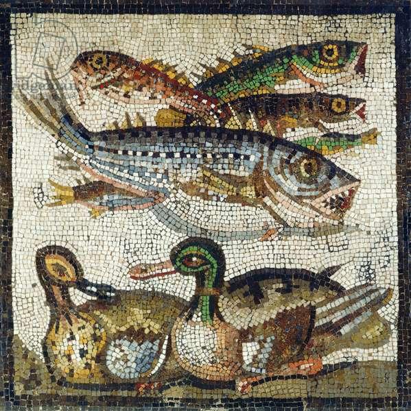 Ducks and Fish (mosaic)