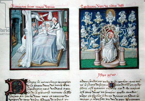 Ms 139/1363 f.5v The Birth of the Virgin and the Tree of Jesse, from 'Le Miroir de l'Humaine Salvation' (vellum)
