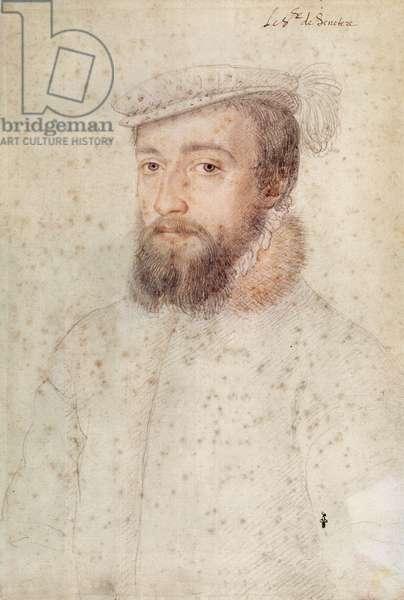 Francois de Saint Nectaire (1523-96), or M. de la Ferte Senectere, c.1555 (pencil on paper)