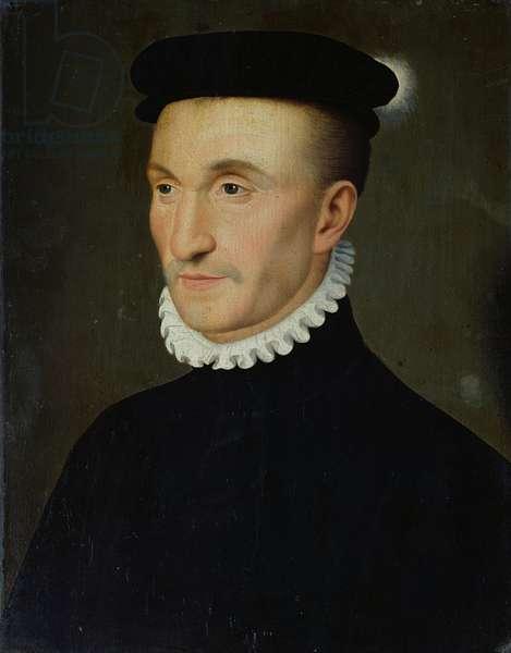 Henri II (1503-55) d'Albret (oil on panel)