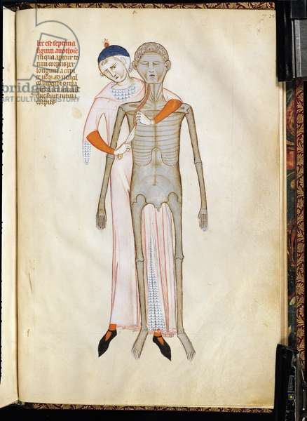 Ms 334/569 fig.7 Dissection of the Thorax of a Cadaver, from 'Liber notabilium Philippi Septimi, francorum regis, a libris Galieni extractus', by Guy of Pavia, 1345 (vellum)