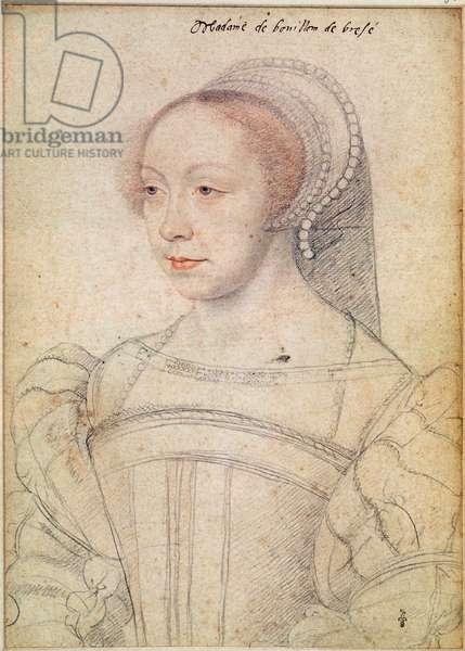 Portrait of Francoise de Breze (c.1519-74) c.1550 (pencil on paper)