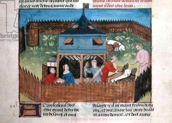 Ms 367/480 fol.33r Kennels, from the 'Livre de la Chasse' by Gaston Phebus de Foix (1331-91) (vellum)