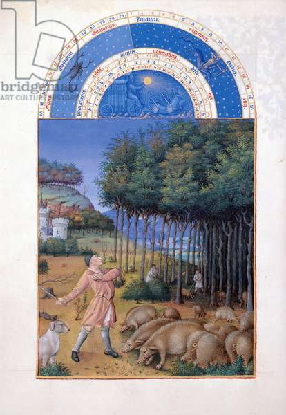 Ms 65/1284 f.11v November: feeding acorns to the pigs, from the 'Tres Riches Heures du Duc de Berry' (vellum) (for facsimile copy see 65826)
