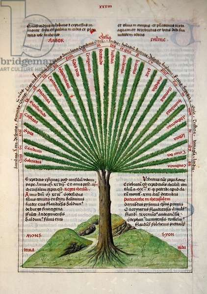 The mystic palm on Mount Zion, symbolising the church, from 'Liber Floridus' by Lambert de Saint-Omer, c.1448 (vellum)