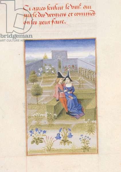 Ms 340/603 Couple in the Garden, 'Le Rustican' by Pietro de Crescenzi (1230-1320) c.1460 (vellum)