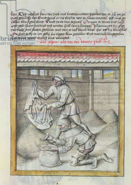 Ms 680/1389 Men stealing wheat, from 'The Fables of Bidpai', c.1480 (w/c on paper)