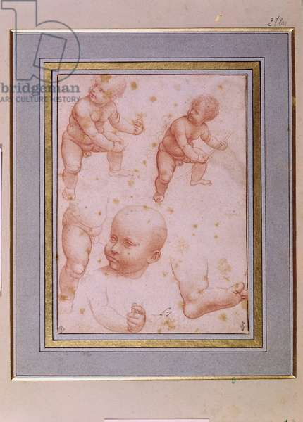 Study for the Infant Christ, c.1501-10 (red chalk on paper)