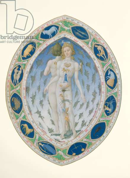 Ms 65/1284 f.14v The anatomy of Man and Woman, from the 'Tres Riches Heures du Duc de Berry' (vellum) (detail of 17159)