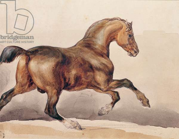 Galloping Horse (w/c on paper)