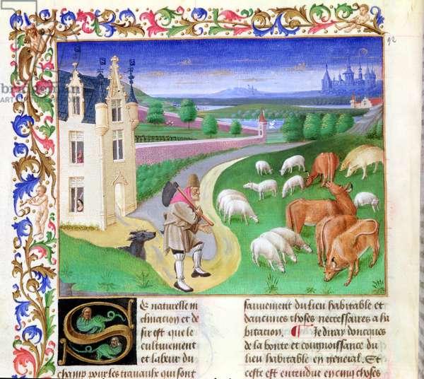 Ms 340/603 no.10 Animals grazing in a meadow, from 'Le Rustican' by Pietro de Crescenzi (1230-1320) c.1460 (vellum)