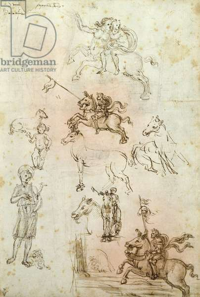 Sheet of studies with a Horse, Nessus and St. Jerome (pen & brown ink on paper)