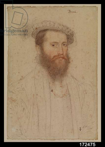 Portrait of Pierre de Cluys, Lord of Briande, c.1551 (pencil on paper)
