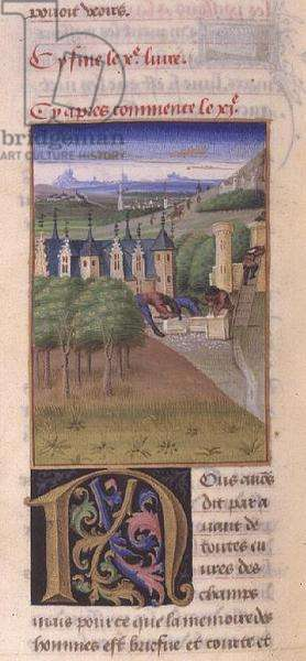 Ms 340/603 Repairing a House, from 'Le Rustican' by Pietro de Crescenzi (1230-1320) c.1460 (vellum)