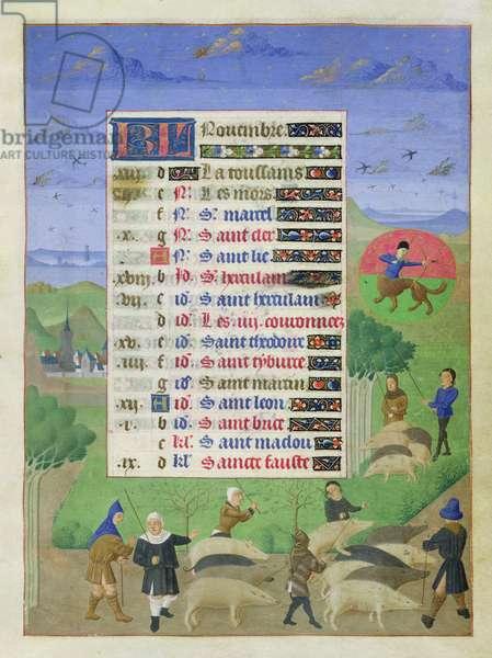 Ms 76/1362 f.11r November: harvesting acorns, from the 'Heures de la Duchesse de Bourgogne', c.1450 (vellum)