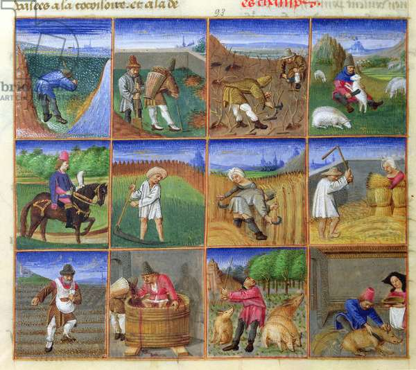 Ms 340/603 f.93 Calendar: 12 Scenes of the Labours of the Year, from 'Le Rustican' by Pietro de Crescenzi (1230-1320/1) c.1460 (vellum) (see 155574)