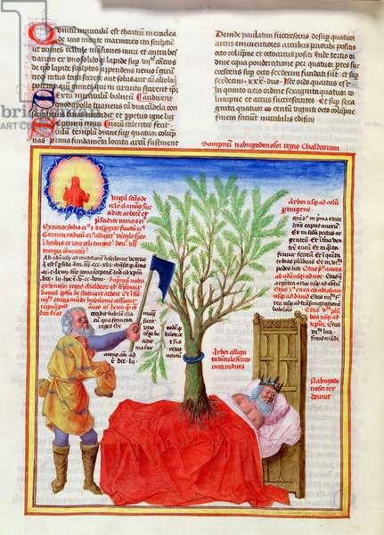 Ms 724/1596 Fol.158v The Tree and the Dream of Nebuchadnezzar, from 'Liber Floridus' by Lambert de Saint-Omer, c.1448 (vellum)