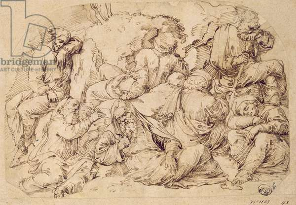 Seven disciples sleeping at the foot of the Mount of Olives, c.1520 (pen & ink on paper)