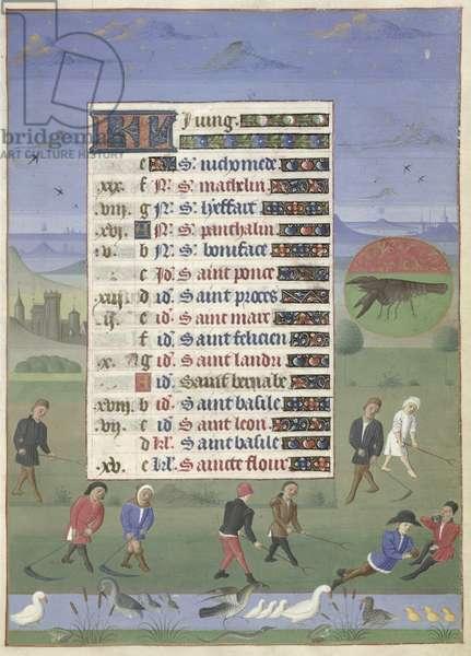 Ms 76/1362 fol.6r June: Scything, c.1450 (vellum)