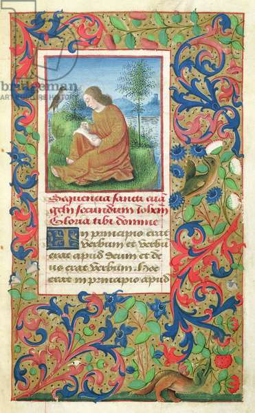 Ms 78/1567 fol.13 St. John the Evangelist on the Island of Patmos, from 'Heures dites de Jules II' (vellum)