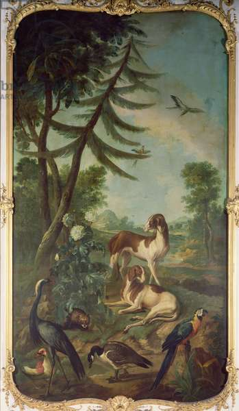 A Macaw, a Barbary Duck, a Canada Goose, a Crane and Two Dogs, panel from the bedroom of Louis Henri I (1692-1740) Prince de Conde (oil on canvas)