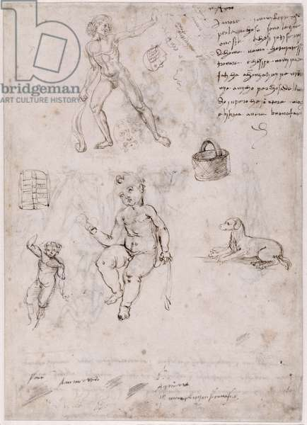 Sheet of studies with naked young man, basket, dog children (verso) (pen & ink & bistre on paper)