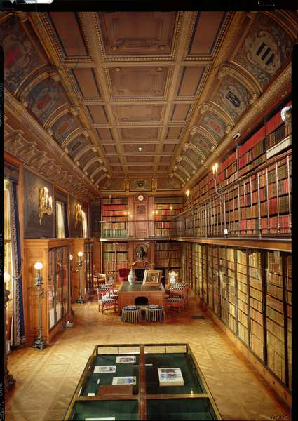 View of the 'Cabinet des Livres' in the Chateau (photo)