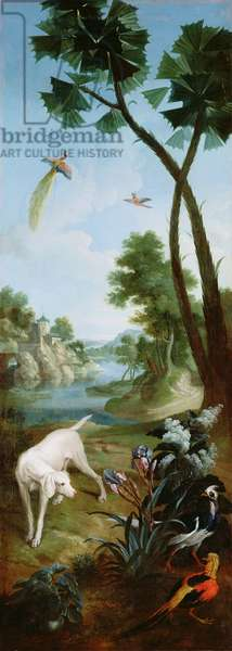 A White Dog with Pheasant, Birds of Paradise and Irises, panel from the bedroom of Louis Henri I de Bourbon, Prince de Conde (oil on canvas)