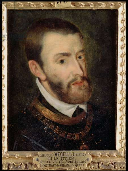Portrait of Charles V (1500-58) (oil on canvas)
