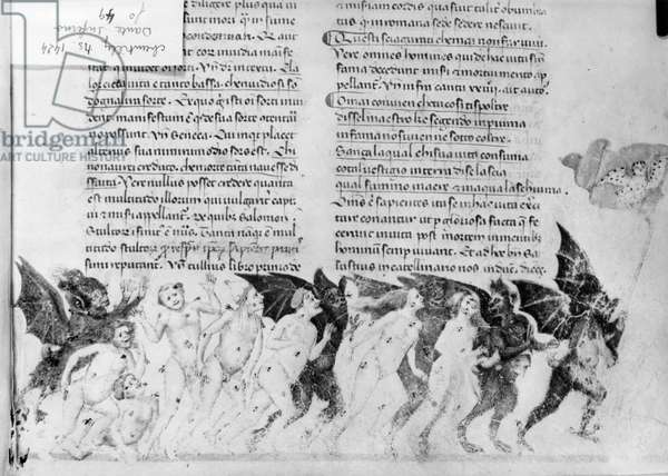 Ms. 597/1424 fol.49 The Damned being led by demons and tormented by bees, Cantica del Inferno', from 'Divina Commedia' by Dante Alighieri (1265-1321) (vellum) (b/w photo)