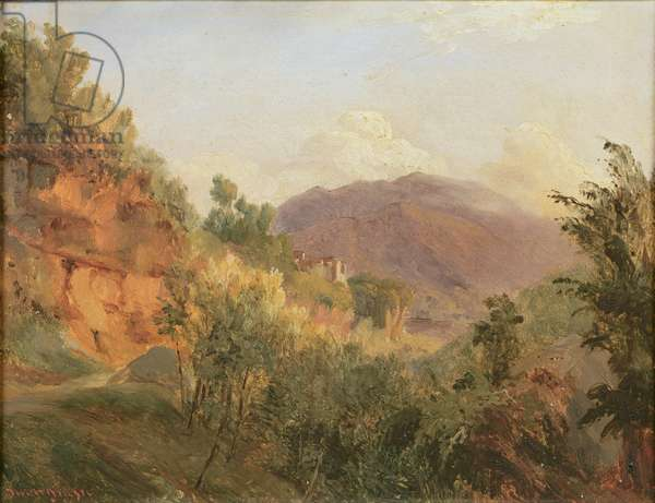 Landscape (oil on canvas)