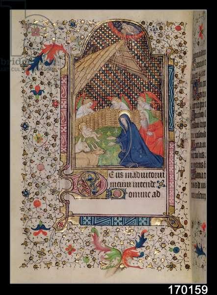 Ms 67/1371 Fol.48v The Nativity (vellum)