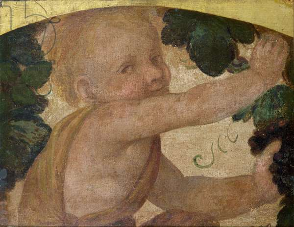 Putto with Vines (tempera on panel)