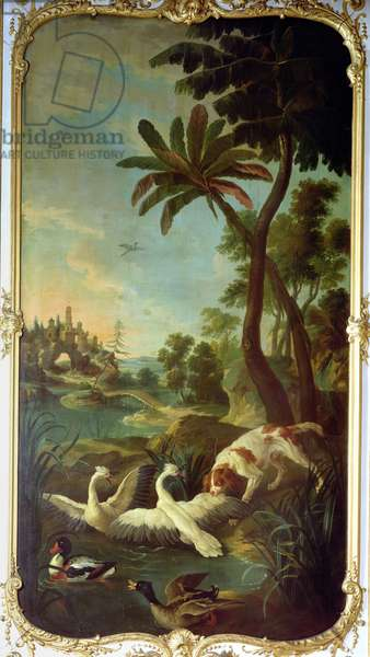 A Spaniel attacking swans, a mallard duck and a shelduck, panel from the bedroom of Louis Henri I (1692-1740) Prince de Conde (oil on canvas)