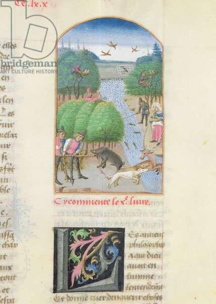 Ms 340/603 fol.11 Hunting, from 'Le Rustican' by Pietro Crescenzi (1230-1320/1) c.1460 (vellum)