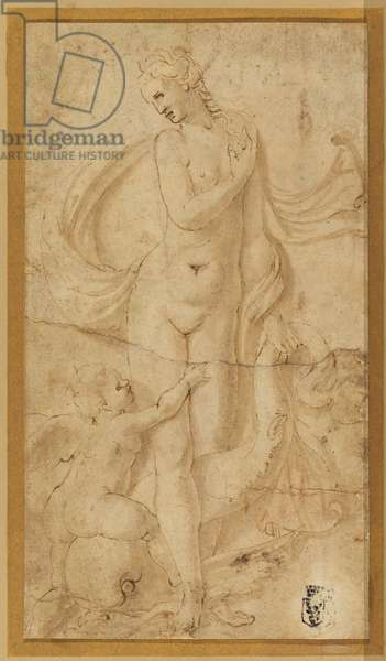 Venus, Cupid and a dolphin, c. 1499-1546