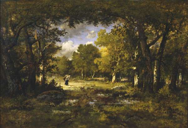 Clearing in a Forest, 1874 (oil on panel)