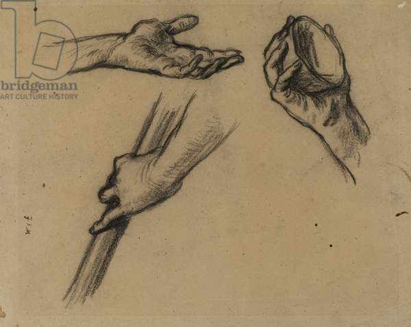 Studies of Hands (charcoal on paper)