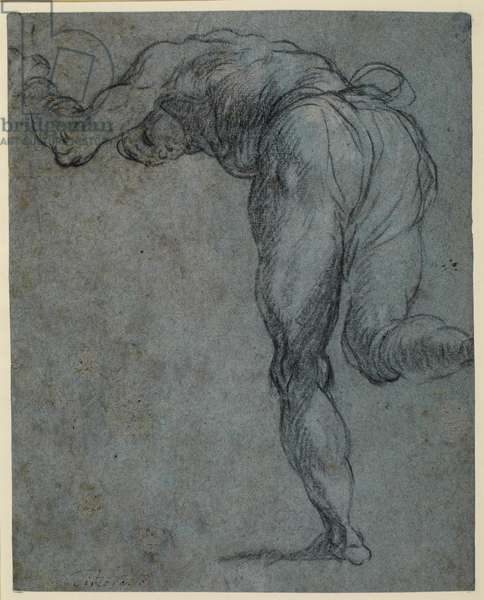 Study of a male figure bending forward, c.1575-85 (black chalk & traces of white chalk on blue laid paper)