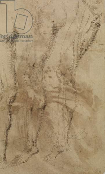 Three studies of a male leg, c.1637 (pen, brown ink and brown wash over traces of black chalk on paper) (verso of 5896003)