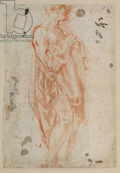 Study for Saint Jerome (verso), c.1520 (chalk on laid paper)