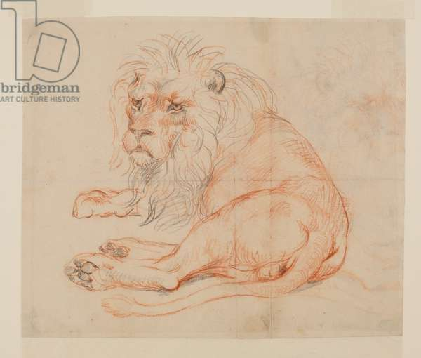 Lion resting (recto), 18th or 19th century (red & black chalk on laid paper) [see 594389]