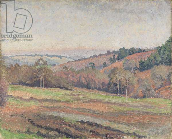 Old Mark's Field, Coldharbour, Surrey, 1915 (oil on canvas)