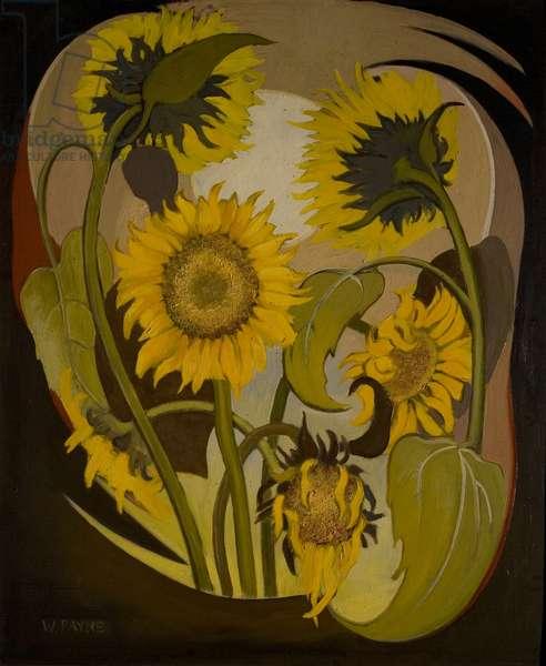 Sunflowers, 1955 (oil on board)
