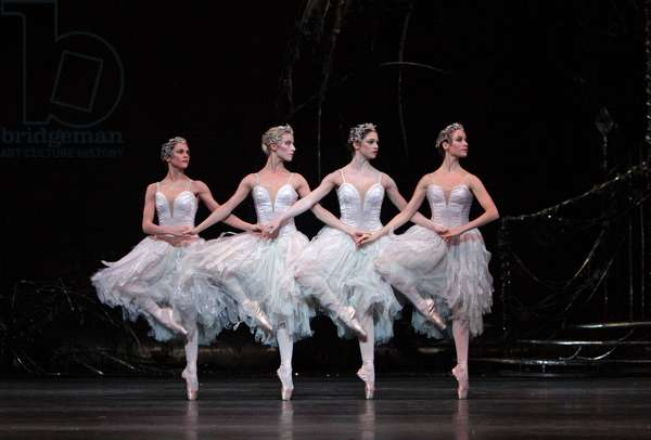 The four cygnets in 'Swan Lake'