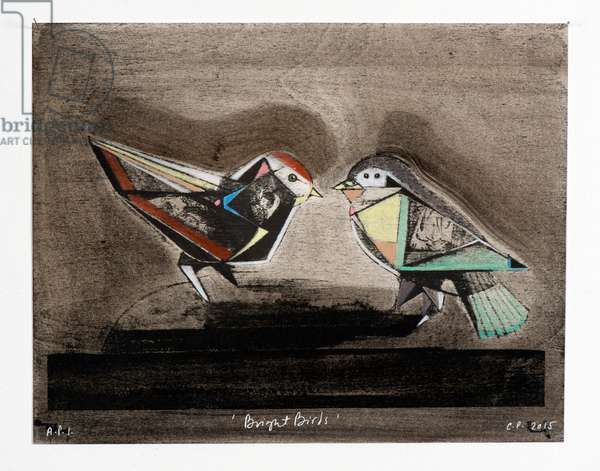 Bright Birds, 2014 (mokulito lithograph with hand colouring)