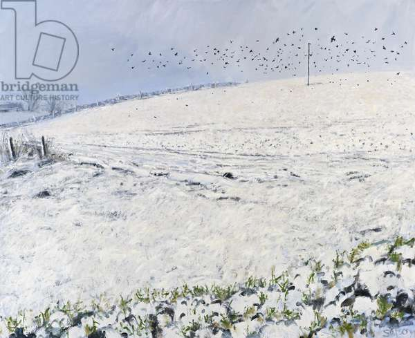 Winter Crows, 2012 (oil on canvas)